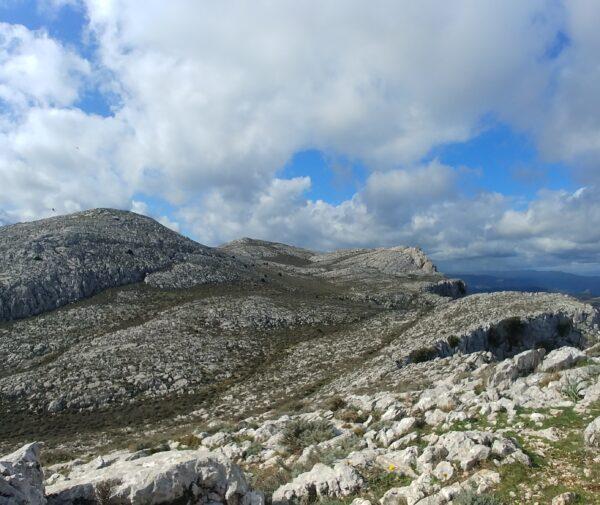 Montalbo – versante Punta Cupetti